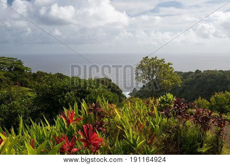 Keopuka rock overlook from garden with pacific ocean in the background