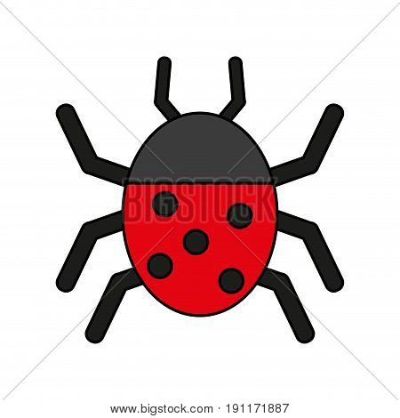 Wonderful ladybug insect illustration icon vector design graphic flat