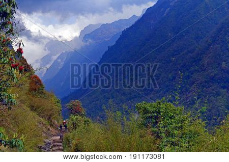 Mountain Landscape in Himalaya, Annapurna Base Camp track. Hills with forest, rhododendron bushes. Annapurna national park, Nepal.