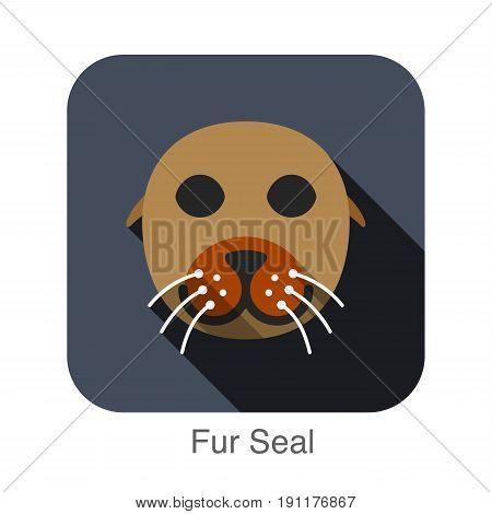 Fur Seal animal face flat design, vector illustration