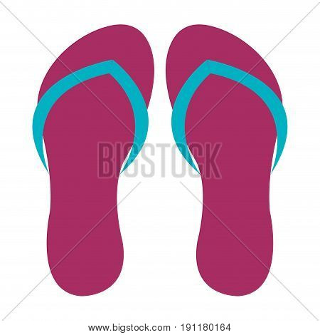 flip flops isolated icon vector illustration design