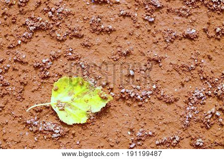 Lleaf On Tennis Court. Dry Light Red Crushed Bricks Surface
