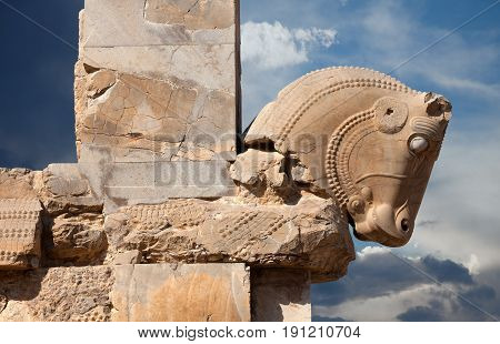 Bull figure used as decorative capital statuary of a column in Persepolis of Shiraz against blue sky with white clouds.
