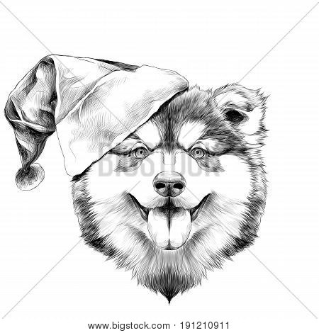 dog breed Alaskan Malamute puppy with his tongue hanging out head in a Santa hat on the side symmetry looks right sketch vector graphics black and white drawing