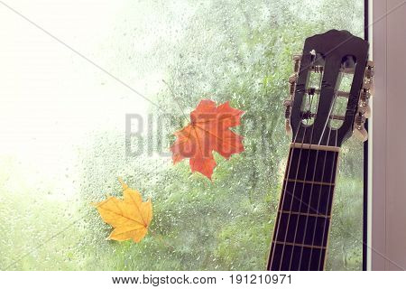 Guitar against the window with a pair of adhering maple leaves and rain drops / autumn melody