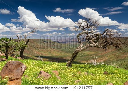 Beautiful day over the Grootberg plateau Namibia Africa