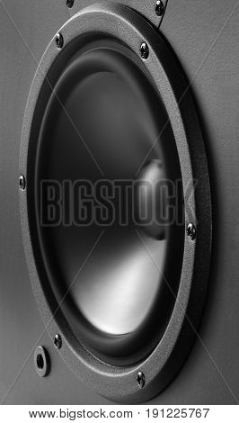 Low-frequency loudspeaker with vibrating diaphragm closeup .