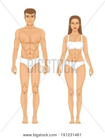 Model of sporty man and woman standing front view. Different body parts. Vector illustration. Female and male body front