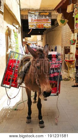 Fes Morocco - May 07 2017: A mule loaded with boxes filled with Coke bottles is standing in front of the shops in the souks of Fes Morocco waiting to be unloaded.