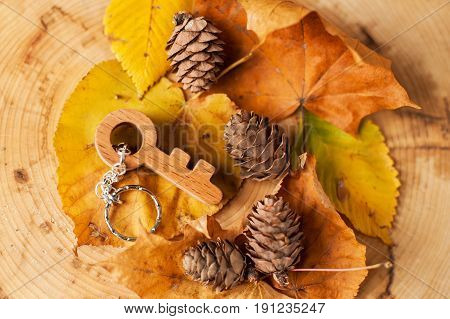 wooden key shaped pendant on wooden and autumn background