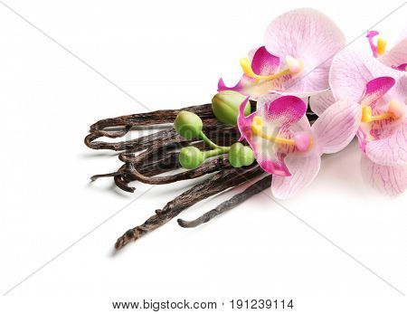 Dried vanilla sticks and flowers on white background, closeup