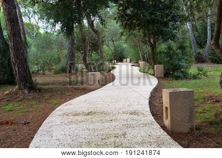 winding concrete path in cloudy woods landscape