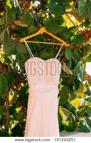 The bride's dress on a hanger in the green in Montenegro