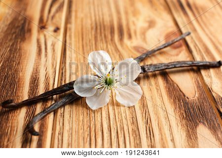 Dried vanilla sticks and flower on wooden background, closeup