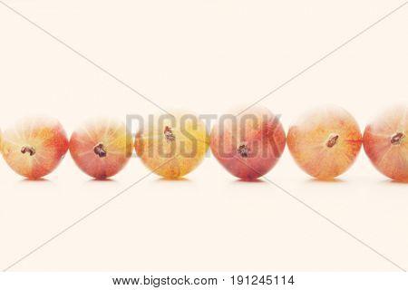 Gooseberry on white background - studio shot