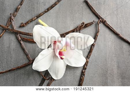 Dried vanilla sticks and flower on grey textured background, closeup