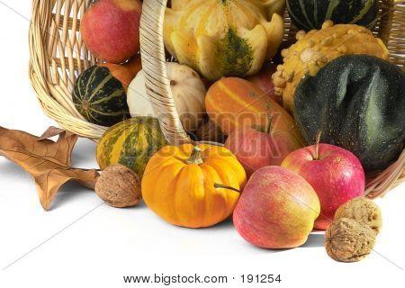 Fall Selection