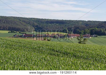Hartenricht - Schwandorf in bavaria picture taken a little Mountain