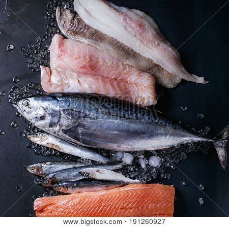 Variety of raw fresh fish. Whole tuna and herring, fillet of salmon, cod, red fish on crushed ice over dark wet metal background. Top view with space. Fish market concept