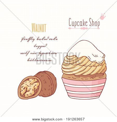Hand drawn cupcake with doodle buttercream for pastry shop menu. Walnut flavor. Vector illustration