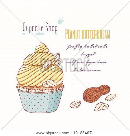 Hand drawn cupcake with doodle buttercream for pastry shop menu. Peanut flavor. Vector illustration