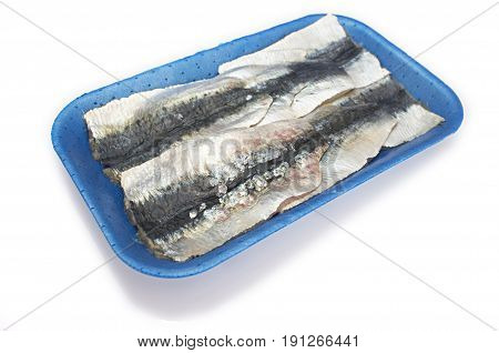 Packed tray of sardine filets from Northeast Atlantic Spain. Closeup