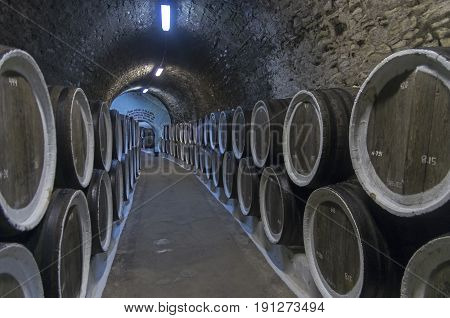 Oak Barrels With Wine In The Winery Sellars. Crimea.