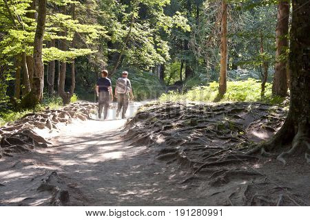 Two persons walking in forest - Plitvice National UNESCO park. Croatia.