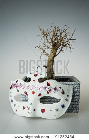 Dry bonsai tree with white mask, tree without leaves