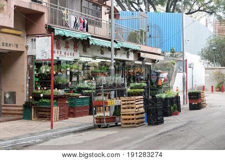 KOWLOON HONG KONG - APRIL 21 2017: Florist Shops at Flowers Market in Kowloon Hong Kong.