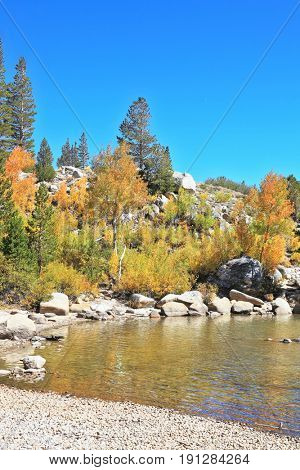 Quiet shallow lake reflects heat yellowing trees