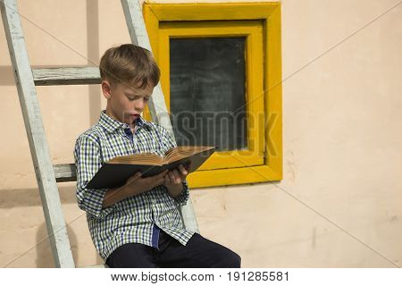 Boy Studying Book