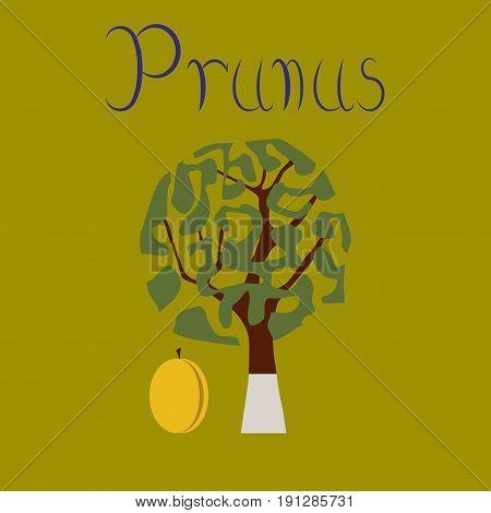 flat illustration on stylish background plant Prunus