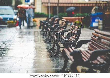 Empty benches with decorative lions stand on the wet street