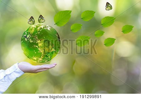 Green world with butterfly and leaves in man hand green background Earth image provided by Nasa.