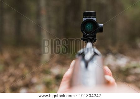 Hunting rifle with collimator sight in forest, close-up.