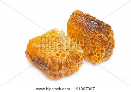 Honeycomb isolated on white background. Close-up view