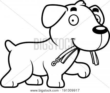 Cartoon Labrador Leash