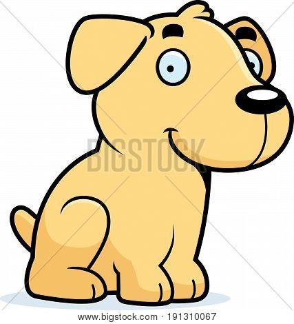 Cartoon Labrador Sitting