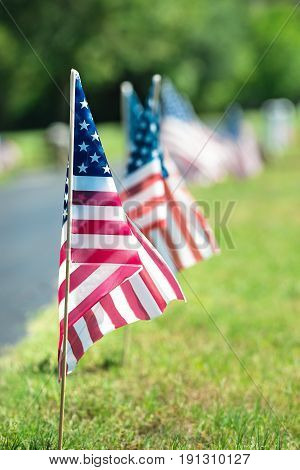 Row of American veteran flags in the cemetery