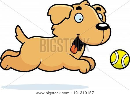 Cartoon Golden Retriever Chasing Ball