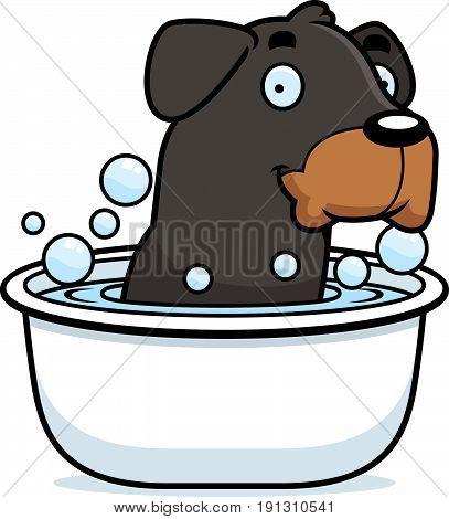 Cartoon Rottweiler Bath