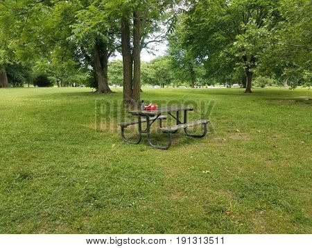 picnic table in park with water bottle and red backpack