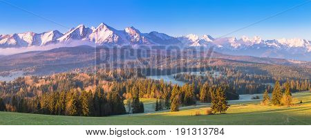 Summer Alpine Scene