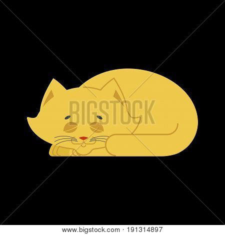 Sleeping Cat Yellow Isolated. Kitten Be Asleep. Sleep Pet