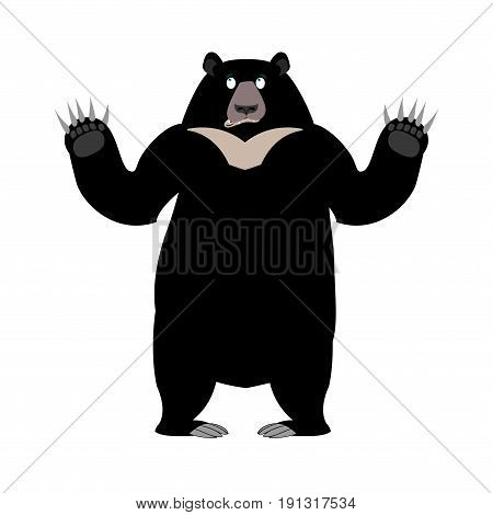 Himalayan Bear Surprise Emotion. Wonderl Wild Animal Emoji. Black Big Beast