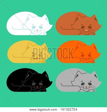 Sleeping Cat Set. Black And White, Yellow And Brown. Kitten Be Asleep. Sleep Pet