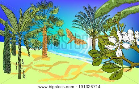 Hand Drawn Sea Scape Background With Tropical Palms, Cycas, Banana And Fan Palms, Cypress, Citrus Fl