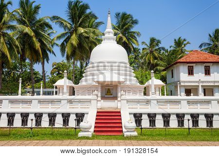 Buddhist Temple In Negombo