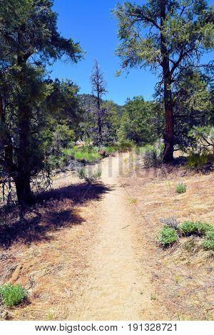 PCT Trail which is a hiking trail traversing the Sierra Nevada Mountains taken near Kennedy Meadows, CA